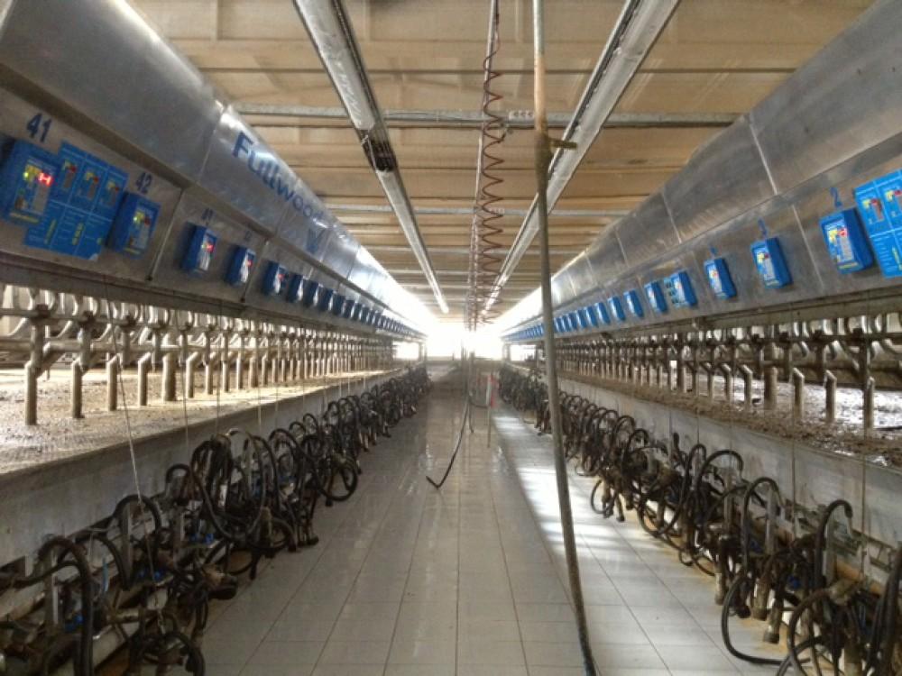 Şekersüt Çiftliği Sağımhane Yapımı || 3MC Yapı